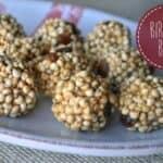 bird-food-balls