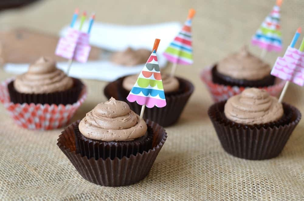 Chocolate Chocolate Chip Cupcakes with Mocha Buttercream Frosting