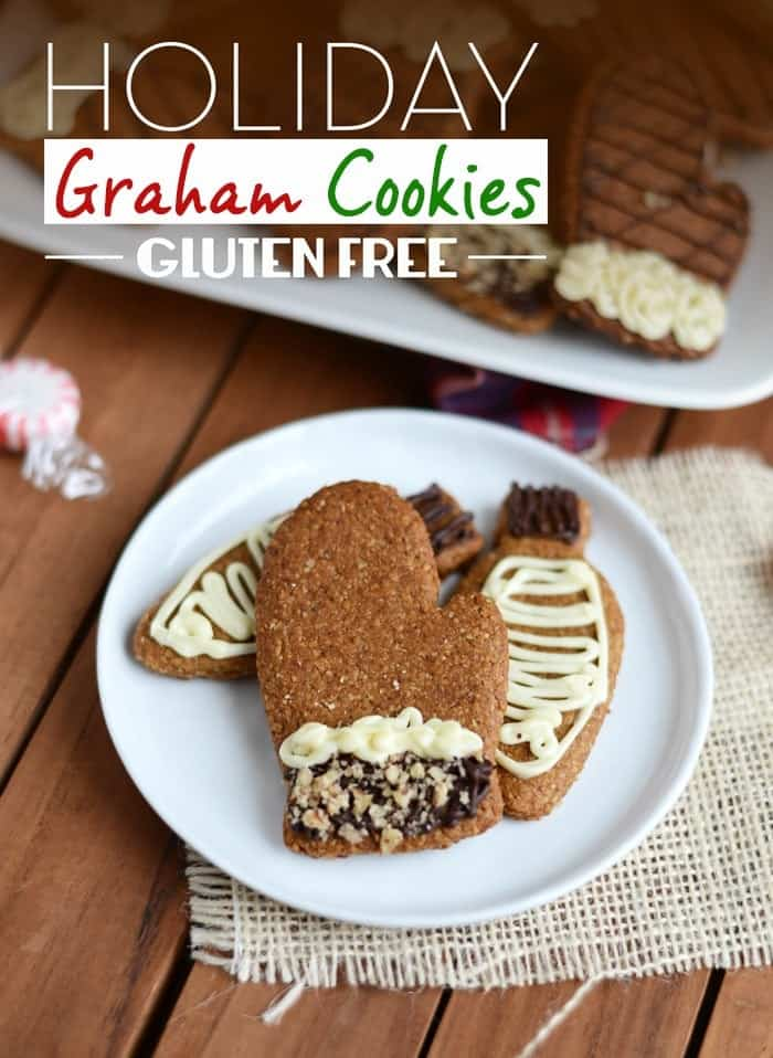 It's almost Christmas, so here are 50 allergy friendly cookie recipes to create family memories and celebrate the holiday season with baking! - @TheFitCookie #cookies #dairyfree #glutenfree | Gluten Free Holiday Graham Cookies