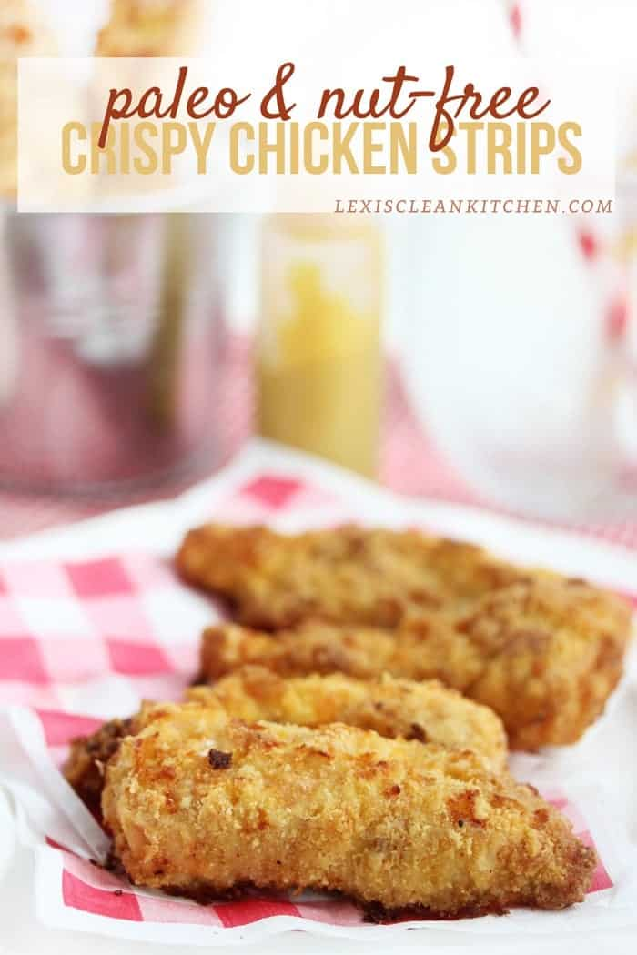 #Paleo and Nut-Free Crispy Chicken Strips plus Healthy Back-to-School Recipes