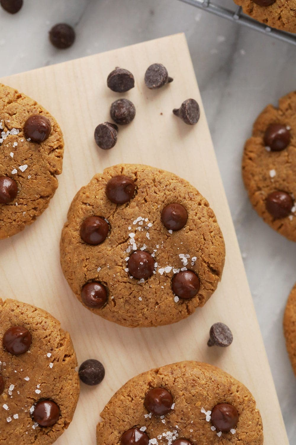 protein cookies with sea salt and chocolate chips