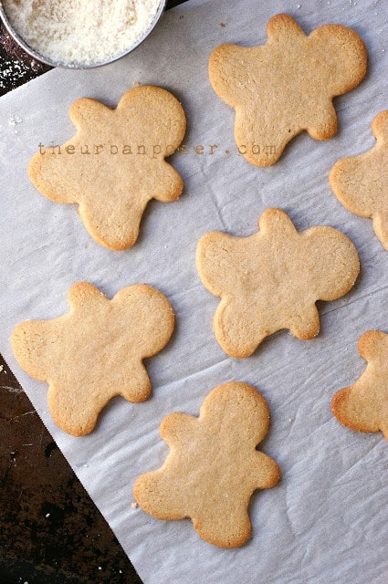 Easy healthy christmas cookie recipes