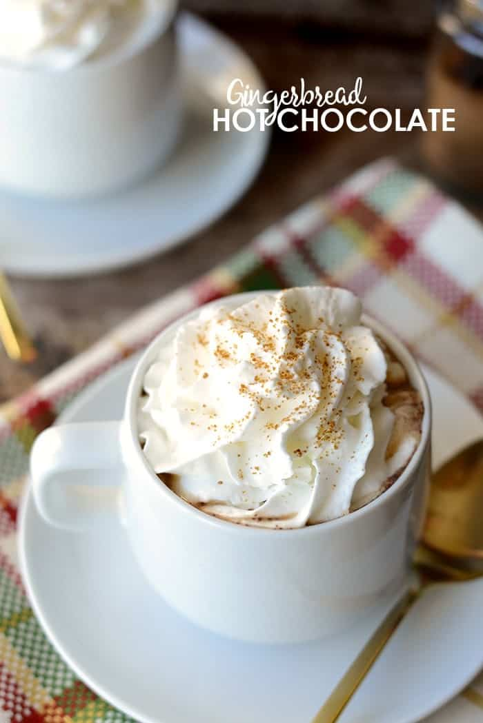 Get creative with your hot chocolate and add a delicious mixture of spices to make it taste like Gingerbread! It's vegan, paleo, and gluten-free friendly. SCORE!