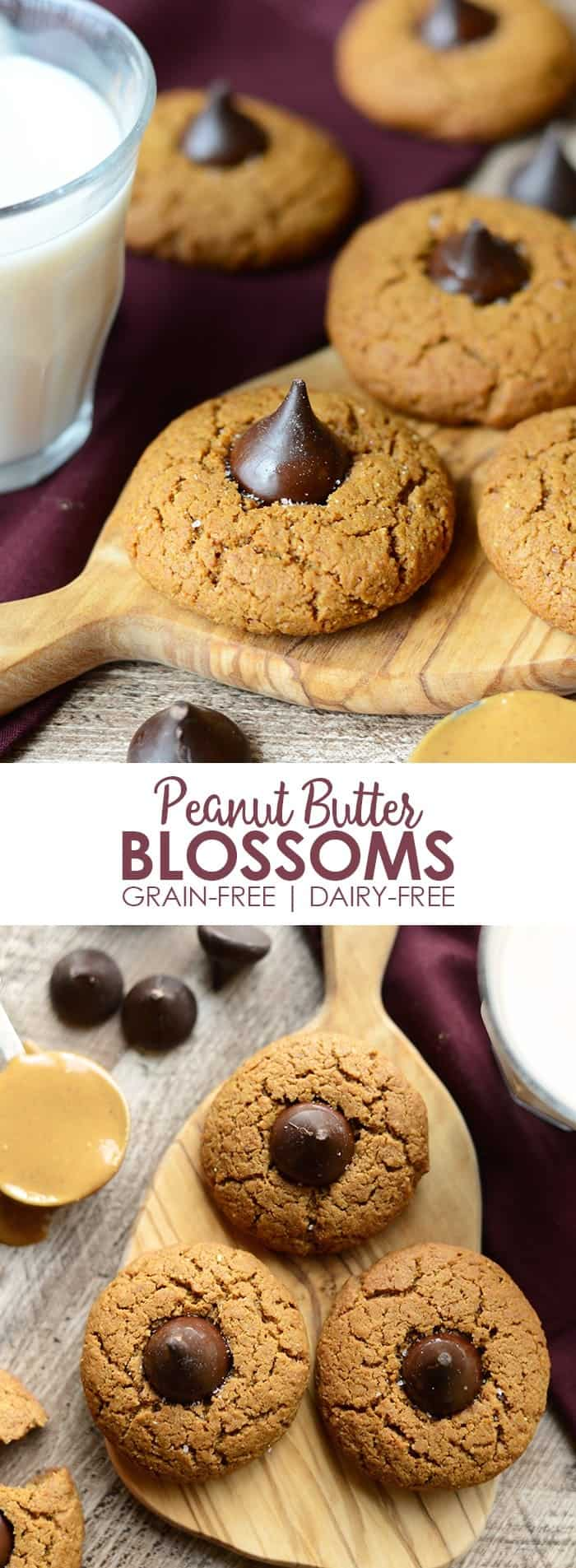 Looking for a healthy peanut butter blossom recipe? I made a few healthy modifications in a classic recipe to bring you the most delicious and easy grain-free peanut butter blossoms of the season!