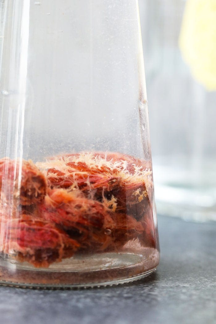 peach pits infusing in a glass jar of vodka
