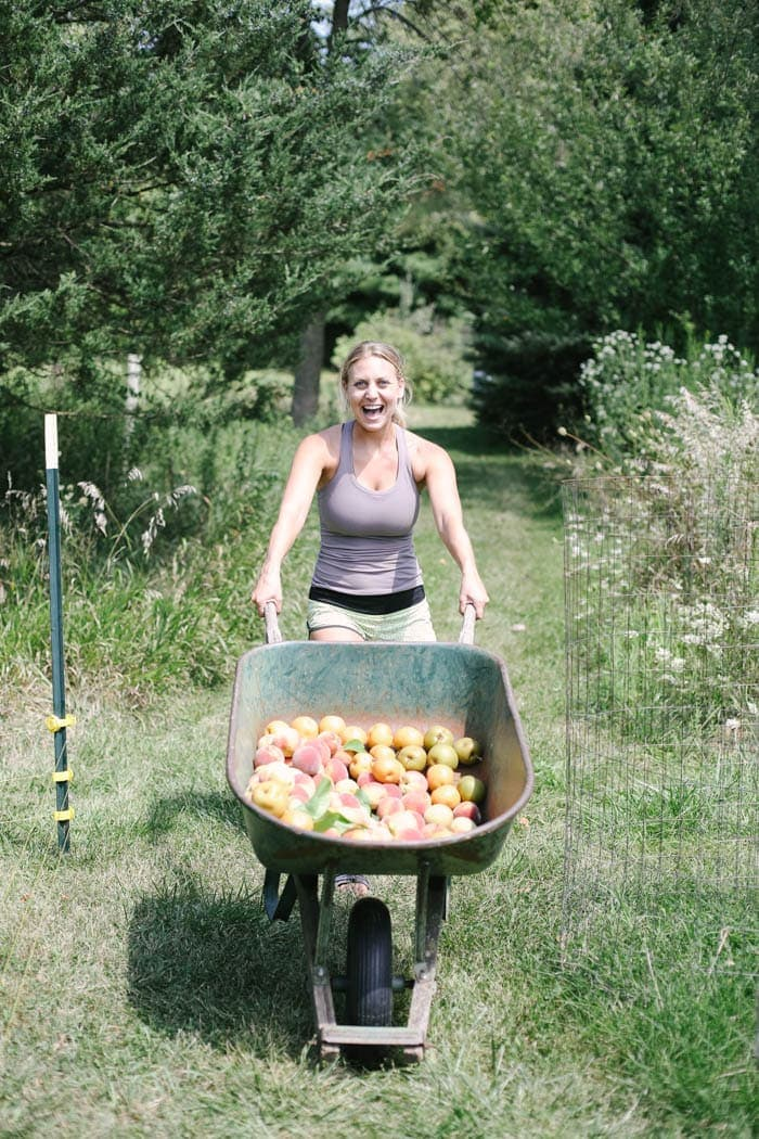 Fit Foodie Travels: Peach Harvest in IL + Seasonal Recipes to Make Right Now!