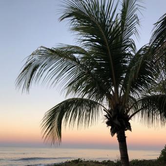 Nicaragua Yoga Retreat  {Fit Foodie Travels}