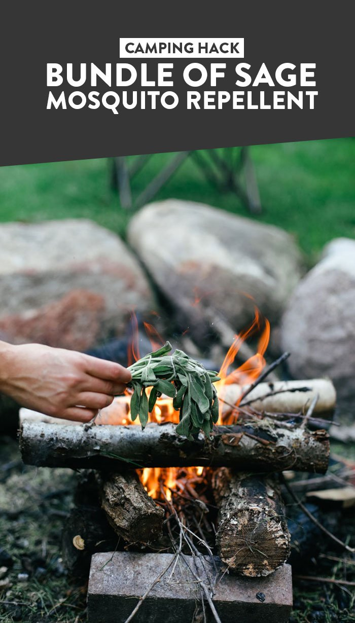 Camping Hack: Bundle of Sage Mosquito Repellent