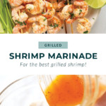 grilled shrimp pin