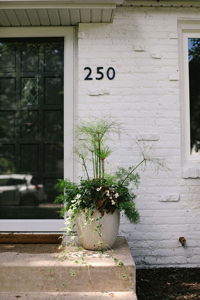 white brick house with flower pot