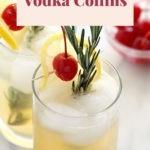 rosemary vodka collins