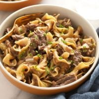 instant pot beef stroganoff in a bowl