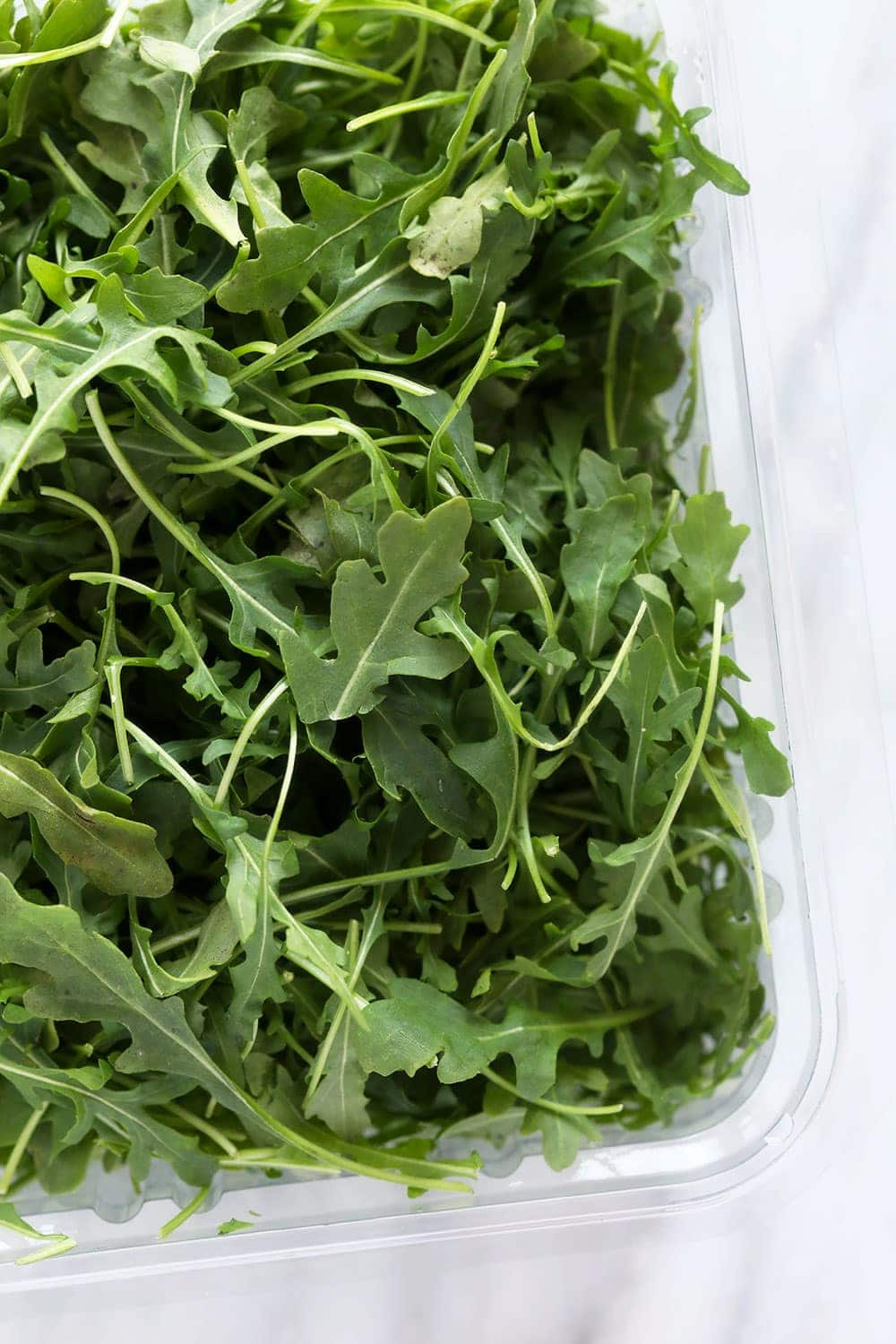 Arugula in a container