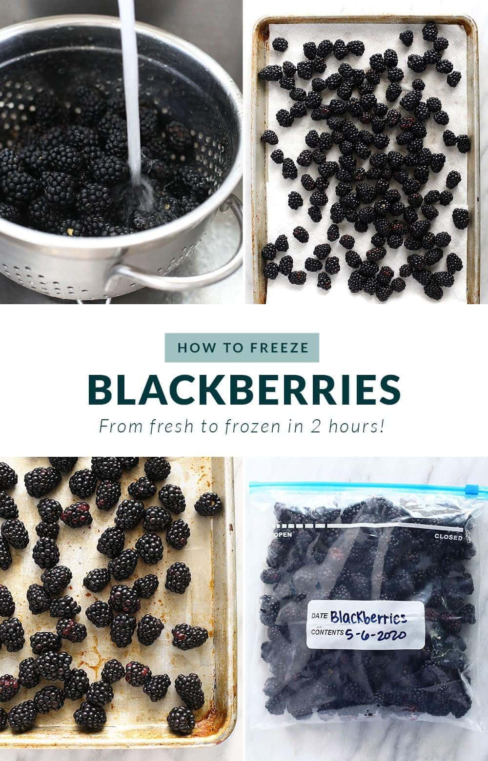 how to freeze blackberries step by step