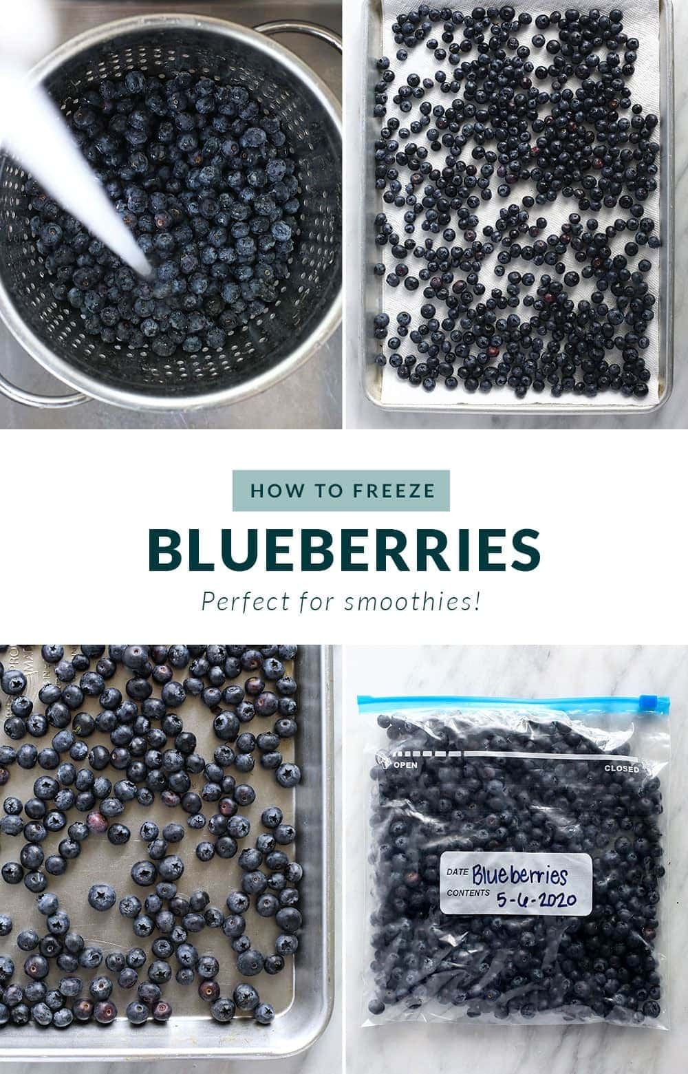 how to freeze blueberries step by step