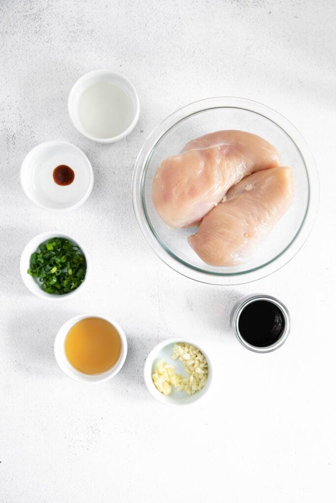 teriyaki chicken ingredients on countertop