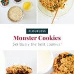 monster cookies pin