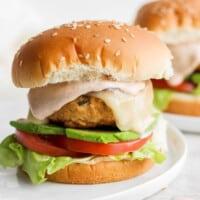 chicken burger on plate