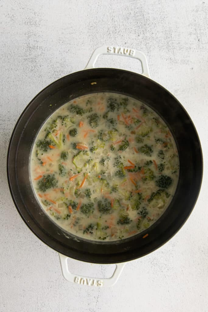 cooking soup in pot